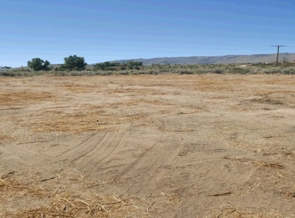 Crooks Lingad Realty sold this Red Rock lot.
